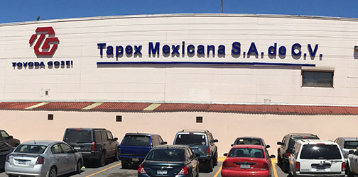 Tapex Mexicana